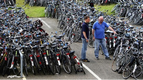 Новичкам: виды велосипедов и их назначение
